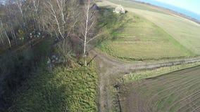 寄生虫飞行在有树和老宅基的秋天农田 影视素材
