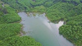 寄生虫飞行在蓝色美妙的平静的高地湖 股票视频