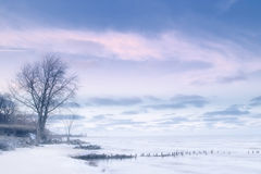 密执安湖冬天 图库摄影