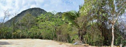 密林从农村小村庄路的风景视图向El伊甸园掠食性动物与阿诺德的电影的巴亚尔塔港墨西哥 免版税库存图片