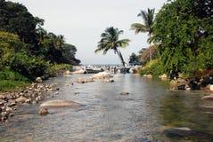密林南部墨西哥的河 图库摄影