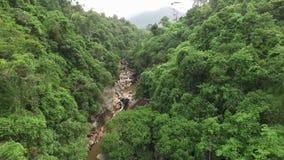 密林和瀑布在亚洲 南越 股票录像