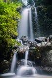 密林在热带雨林的瀑布小瀑布与岩石和土耳其玉色池塘 库存图片