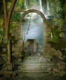 密林废墟 库存图片