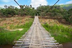密林森林山太阳桥梁 库存照片
