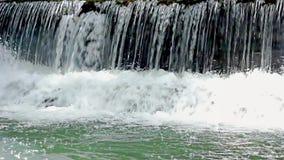 密林河小河从瀑布的 股票录像