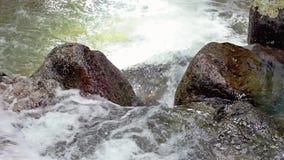 密林河小河从瀑布的 影视素材