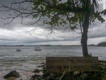 密林海滩在Unawatuna,斯里兰卡 库存图片