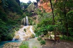 密林瀑布 免版税图库摄影
