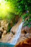 密林瀑布 库存图片