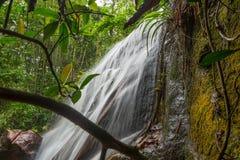 密林瀑布VII 库存照片