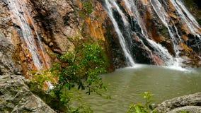 密林热带国家天堂风景  在水流量的绿色雨林行动的瀑布小瀑布从峭壁的 股票录像