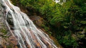 密林热带国家天堂风景  在水流量的绿色雨林行动的瀑布小瀑布从峭壁的 影视素材