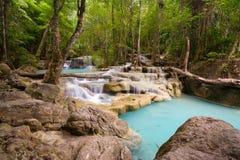 密林热带瀑布 免版税库存图片