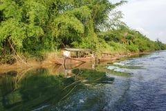 密林美好的风景的河 免版税库存图片