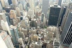 密林都市的曼哈顿 图库摄影