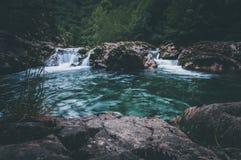 密林风景用流动的绿松石水 免版税库存照片
