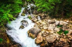 密林风景用英王乔治一世至三世时期小瀑布瀑布流动的绿松石水在乔治亚深绿森林山的  库存图片