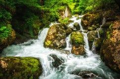 密林风景用英王乔治一世至三世时期小瀑布瀑布流动的绿松石水在乔治亚深绿森林山的  免版税图库摄影