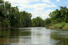 密林kakadu国家公园河 免版税库存图片