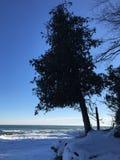 密歇根湖峭壁在冬天 免版税图库摄影