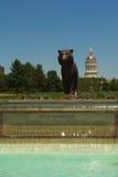 密苏里大学,哥伦比亚,美国 免版税库存图片