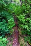 密西西比木栅停放状态 免版税库存照片