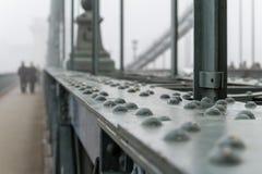 密集的冬天雾在布达佩斯 库存图片