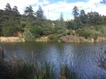 富兰克林峡谷Park湖 免版税库存照片