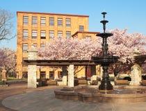 富兰克林广场喷泉 免版税库存图片