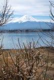 富士与kawaguchiko湖的lanscape视图 免版税图库摄影