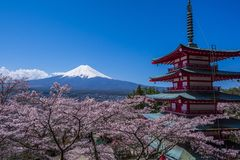 富士山、一座五层塔和樱桃树 免版税库存图片