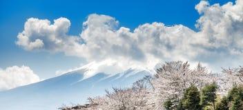 富士山和桃红色樱花在春季,日本 免版税图库摄影