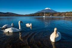 富士山和湖山中 免版税库存图片