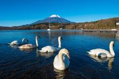 富士山和湖山中 免版税库存照片