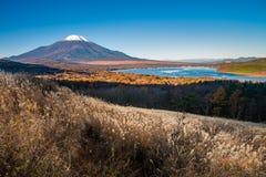 富士山和湖山中 免版税图库摄影