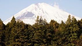 富士山在冬天,日本峰顶  库存照片