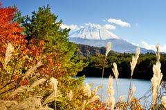 富士山在秋天 免版税图库摄影