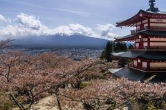 富士山美丽的景色从Chureito塔的,有在绽放的樱桃树的在春天, Arakura,吉田市,山梨Prefe 免版税库存图片