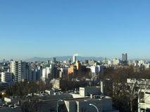 富士山视图 库存图片