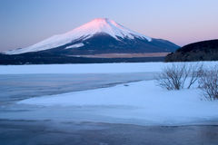 富士挂接冬天 库存照片