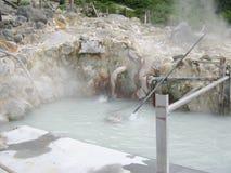 富士箱根日本公园池塘硫磺顶层 库存图片