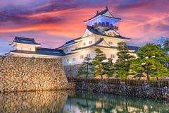 富山,日本城堡 免版税图库摄影
