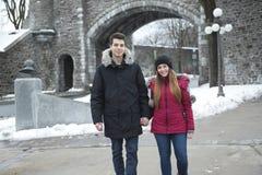 富感情的夫妇的图象在公园在冬天 免版税库存图片