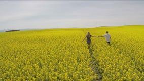 富感情的握手的男人和妇女,当跑在油菜子农场时 股票录像
