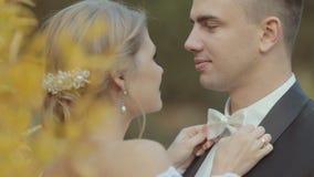 富感情的新娘改正蝶形领结新郎和他们 股票视频