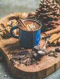 富有的冬天热巧克力用桂香和核桃在杯子 免版税库存照片