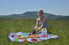 富有的野餐的夫人 免版税库存图片