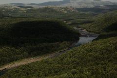 富有的绿色树木丛生的山和河高地的,顶视图 免版税库存图片