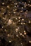 寒假绿色与光的圣诞树 图库摄影